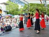 stadtteilfest2015_P1040519m