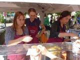 flohmarkt_vauban_2019-09-14_P1060289